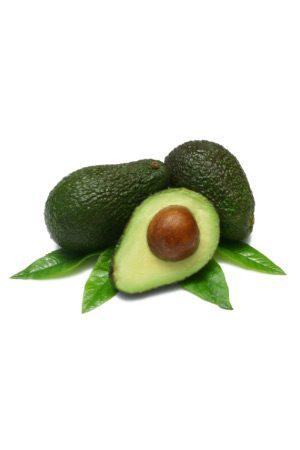 Pianta di Avocado Pinkerton