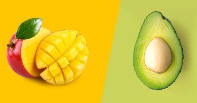 Coltivazione Mango e Avocado Cairo & Doutcher - Macfrut 2018 Cesena