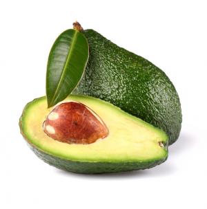 avocado frutto