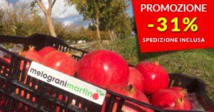 Vendita melagrane Wonderful 12 kg - Spedizione gratuita